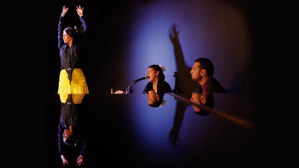JALEO: Flamenco Show
